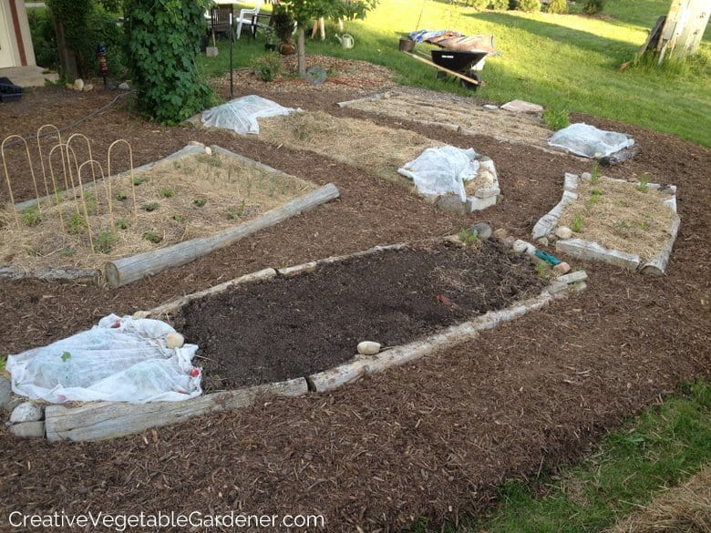 Mulch Your Vegetable Garden