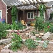 Stop Tilling Your Vegetable Garden!