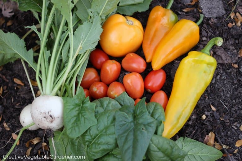 Vegetable Varieties