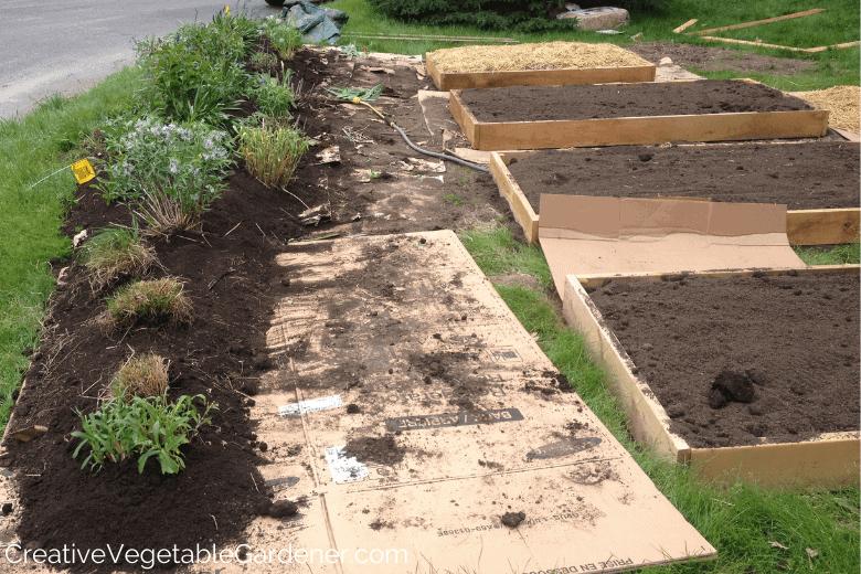 creating a flower garden
