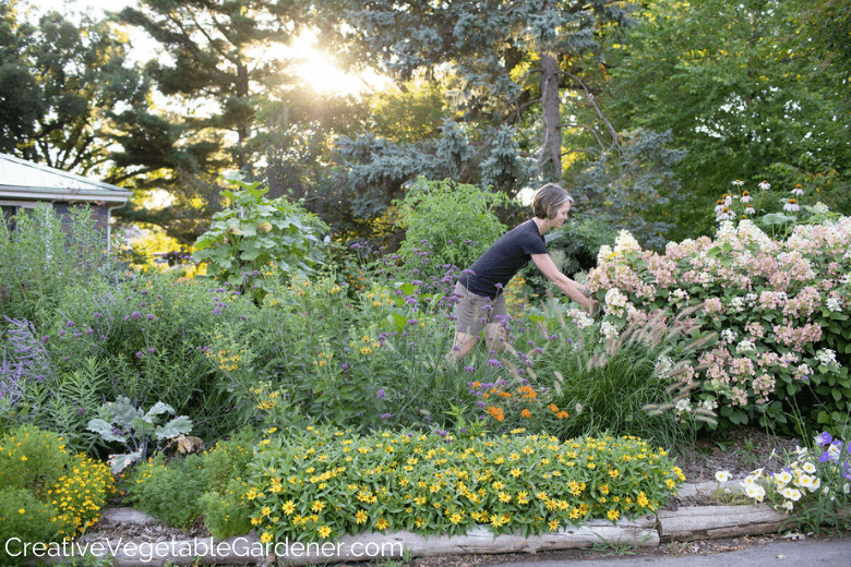 woman harvesting from a flower bed
