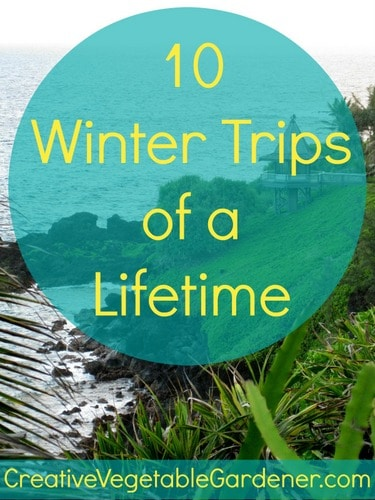 Winter Trips of a Lifetime