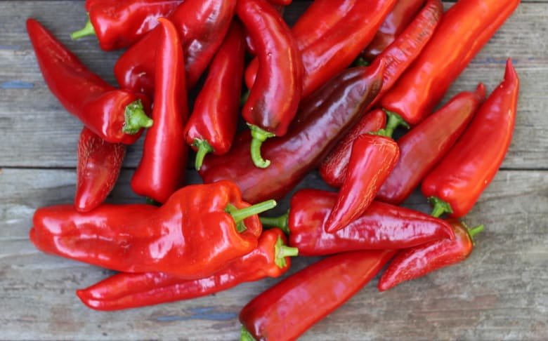 Red Pepper Harvest