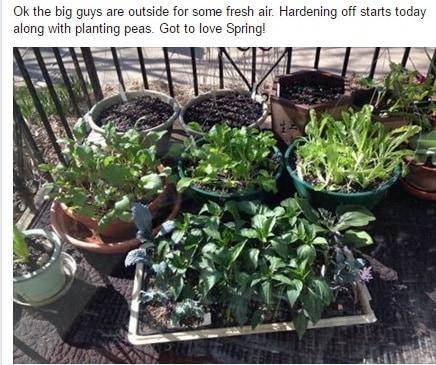 Garden learning community