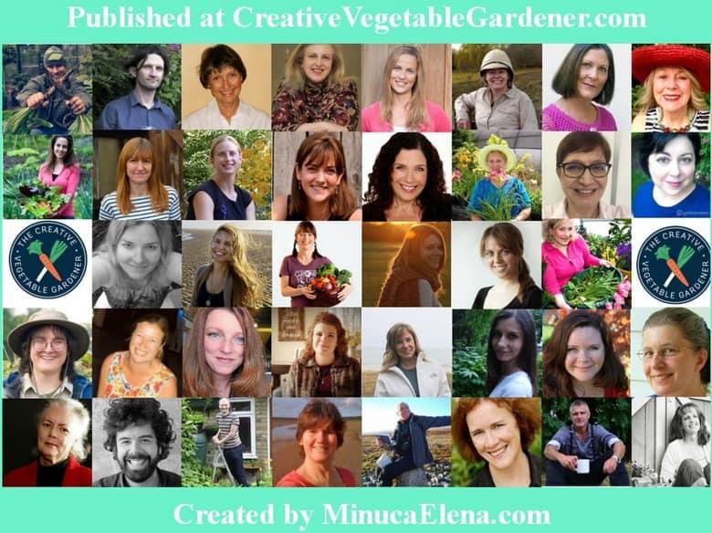top garden bloggers share garden mistakes