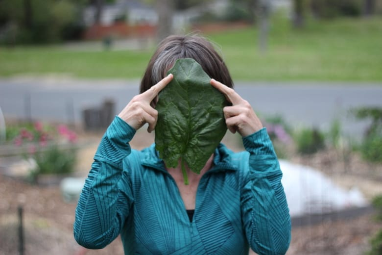 woman holding spinach leaf