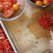 The Easiest Way to Preserve Your Tomatoes