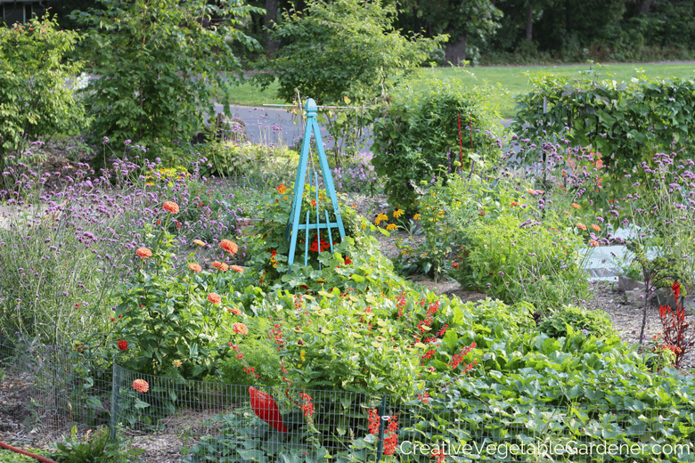 How to create a colorful kitchen garden garden pics and tips for Creating a vegetable garden