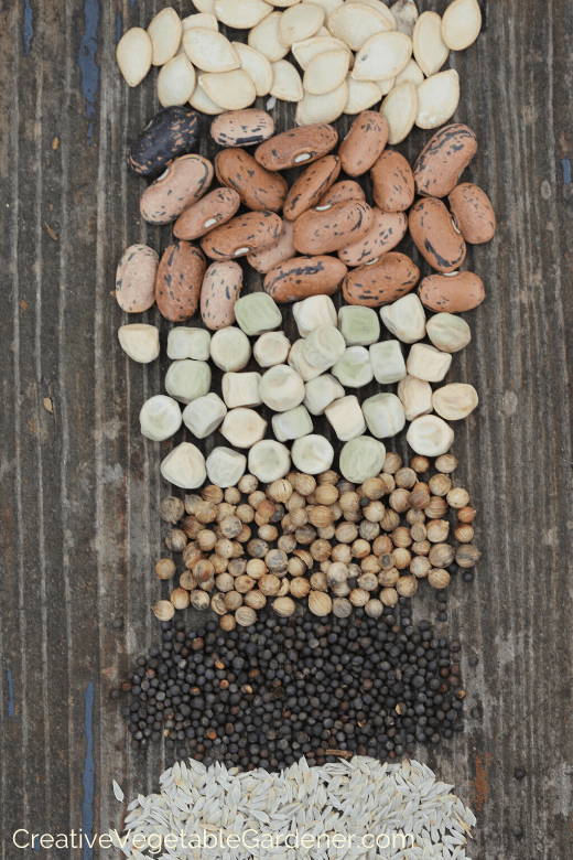 what to look for in a seed starting mix