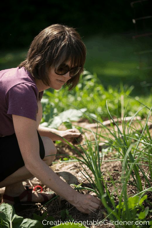 woman weeding and mulching in vegetable garden
