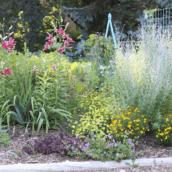 Flower Garden Design – The #1 Mistake