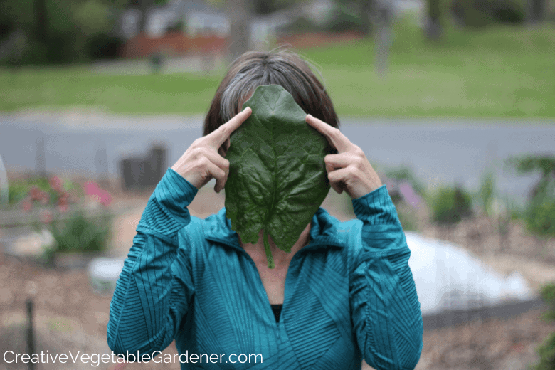woman with huge spinach leaf