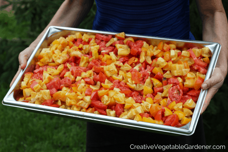 Chopped tomatoes from the garden with easy food preserving ideas