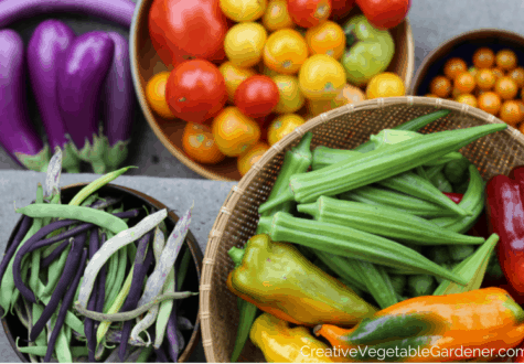 Harvest from the garden with easy food preserving ideas for summer