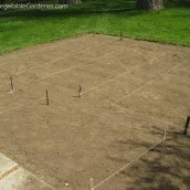 Use this Trick Before You Make Garden Changes