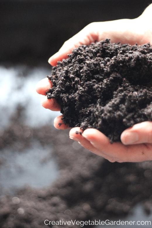 gardener holding soil