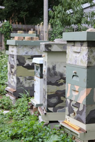 Colorful Painted Beehives