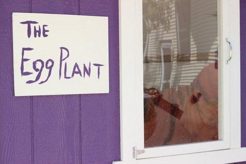 Purple chicken coop urban vegetable garden