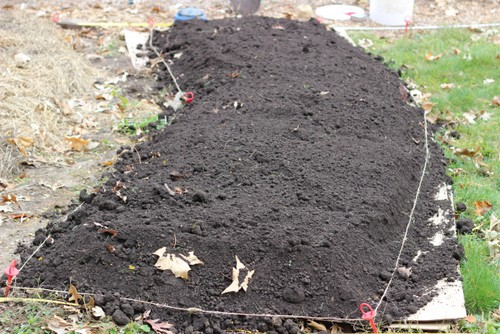 Mounded raised garden beds