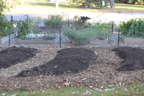 How to expand your front yard vegetable garden