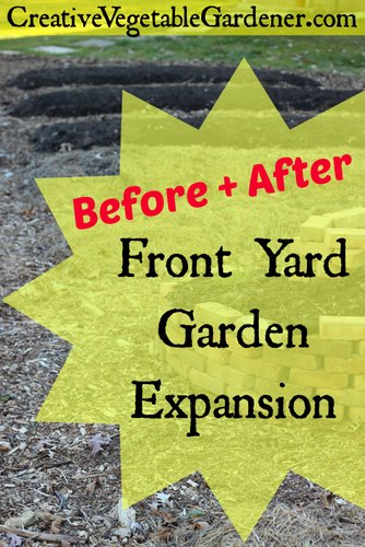 Expand front yard vegetable garden