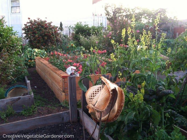 CA Community Garden