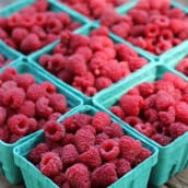 The Best Way to Grow Raspberries