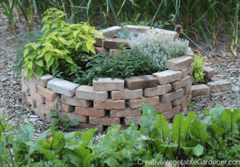 herb spiral in garden