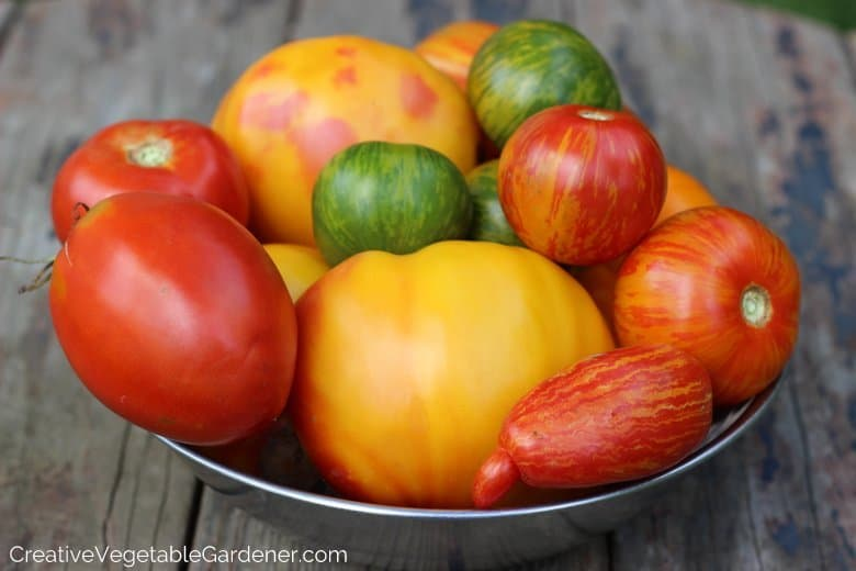 bowl of of garden tomatoes with organic gardening tips