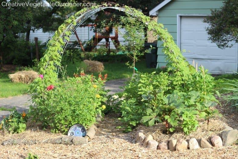 Hog Panel Trellis Vegetable Garden