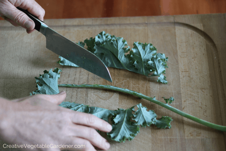 directions on how to freeze kale