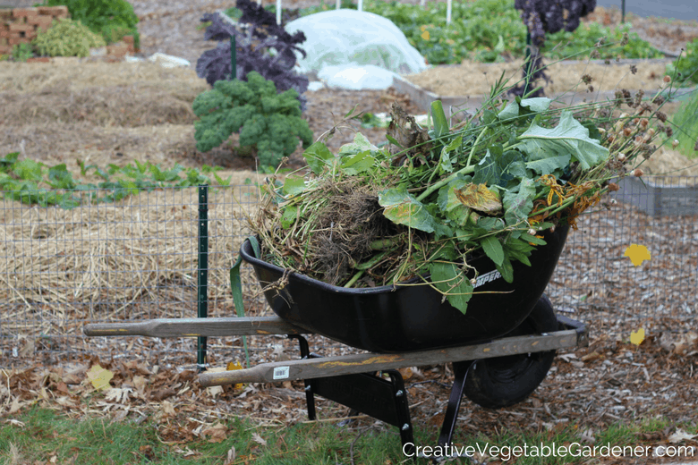 wheelbarrow full of plant debris to prevent vegetable pests in garden