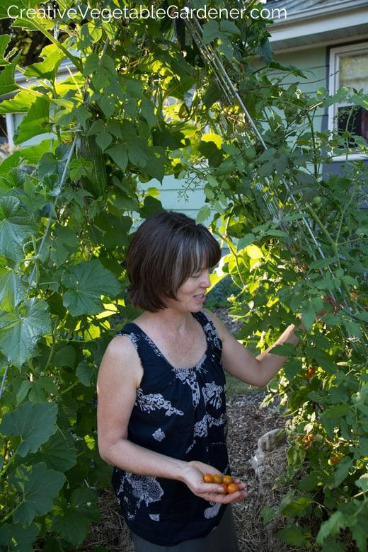 Vegetable Garden Mistakes