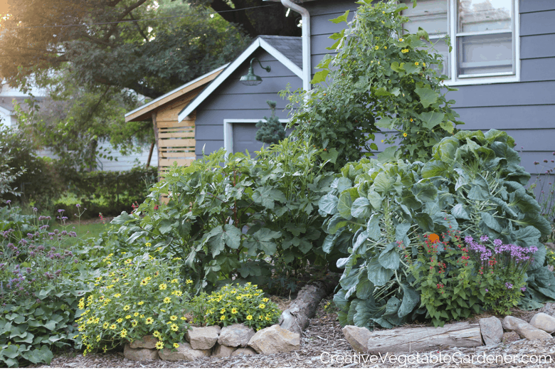 vegetable gardening mistakes in a yard