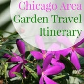 Chicago Garden Destinations for the Traveling Gardener