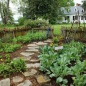 Garden Design: Paths