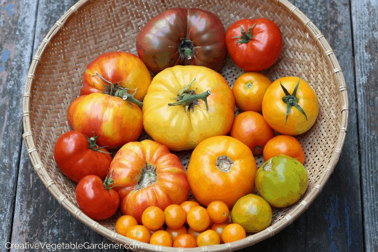 how to buy different vegetable varieties