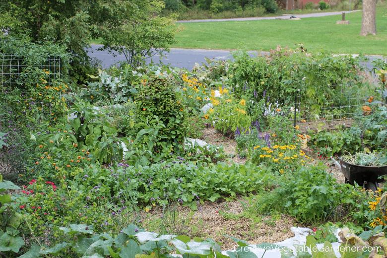 vegetable garden productive