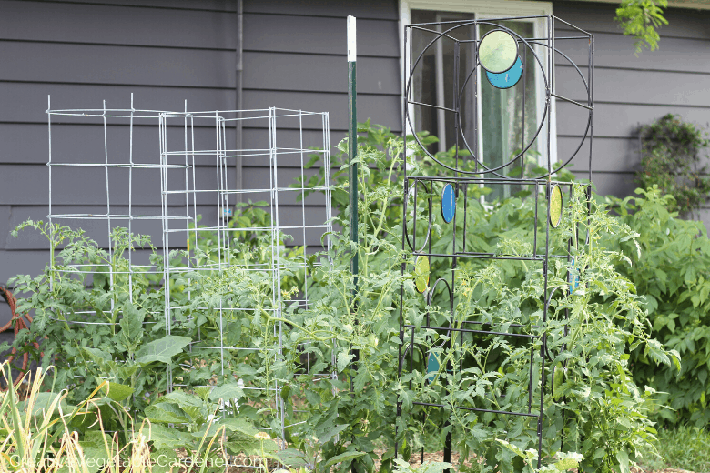 options for tomato cages
