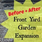 Front Yard Vegetable Garden Expansion