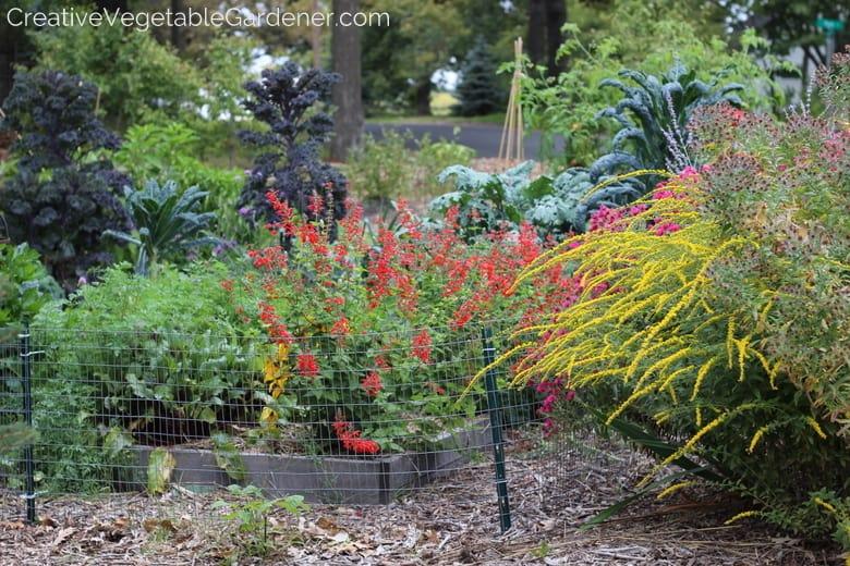 Creative vegetable gardener design a decorative vegetable for Ornamental vegetable garden design