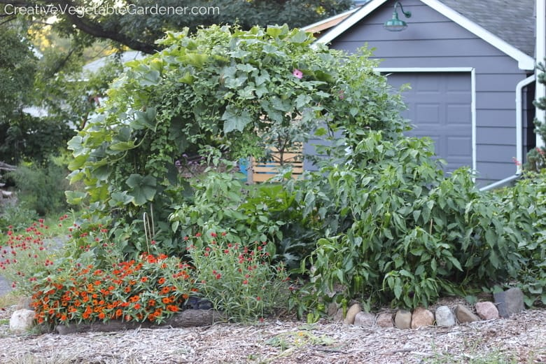 Creative vegetable gardenereasy and beautiful diy garden for Vegetable garden trellis