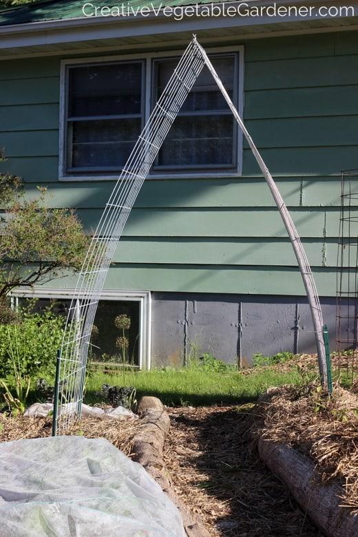 Creative Vegetable Gardener Easy And Beautiful Diy Garden