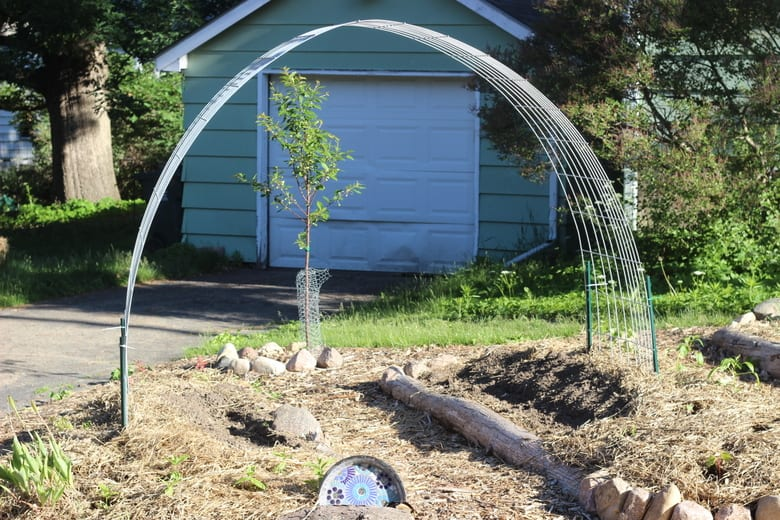 Vegetable Trellis Simple
