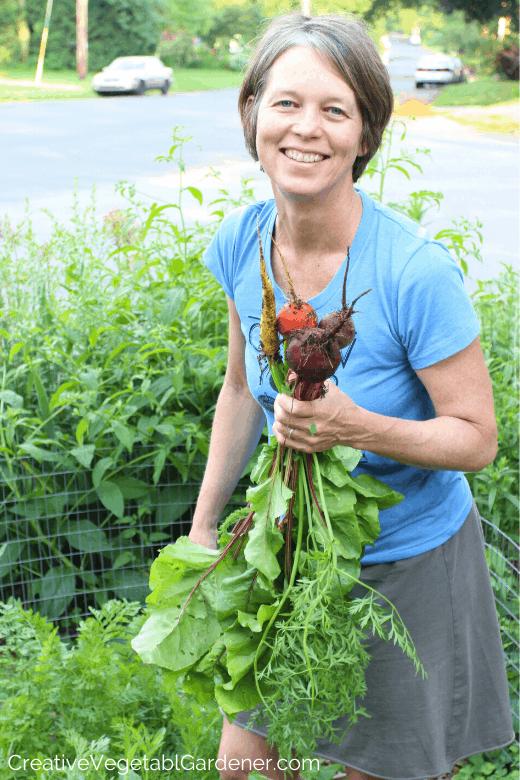 woman harvesting fall beets