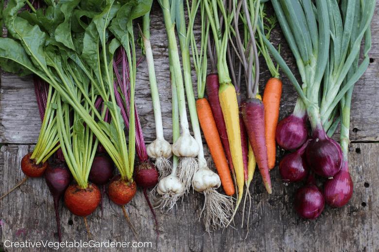 garden harvest for food storage