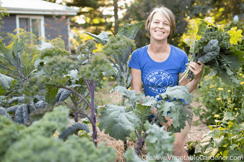 woman harvesting kale for salad