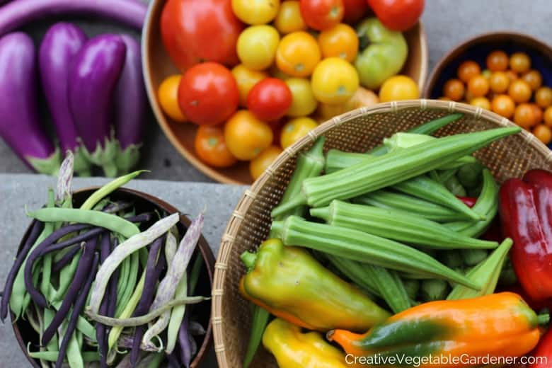 vegetable garden harvest with healthy holiday eating