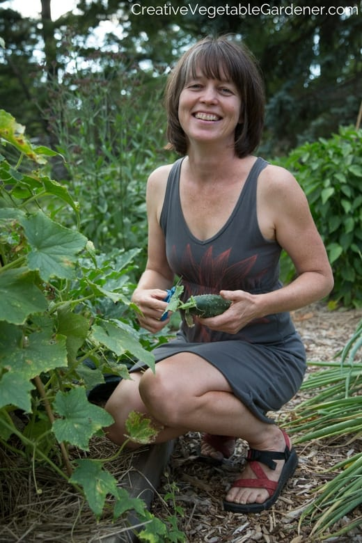 woman harvesting cucumber and talking about best gardening podcasts