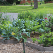 4 Favorite Gardening Podcasts You Should Be Listening To